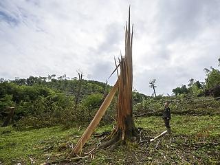 600 milliót ad a kormány a gazdáknak a viharkárok miatt