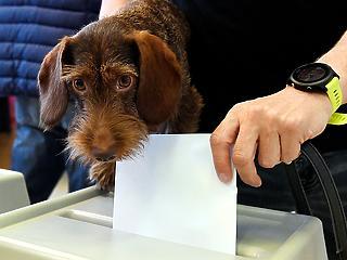 17,16 százalék a részvételi arány, többen mennek el szavazni, mint legutóbb