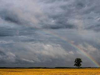 Hamarosan leszakad az ég Magyarországon, de mi lesz a kánikulával?