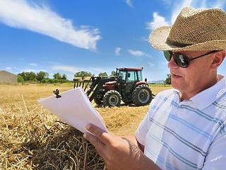 Akkora a meleg, hogy kisegítik a gazdákat