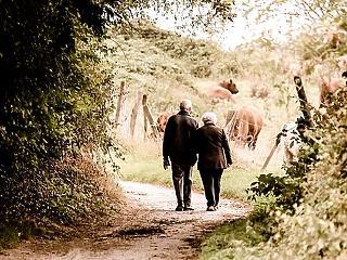 A nyugdíjasok fele még mindig a postást várja