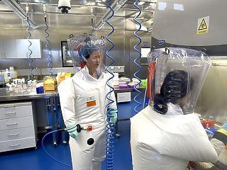 Piacról vagy laborból jött a vírus? Megint áll a bál Covid-ügyben