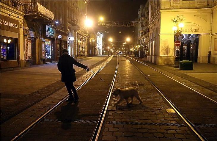 Csak kutyával sétálhatunk éjjel: miskolci utcakép a kijárási tilalom idején 2020. november 14-én. (Fotó: MTI/Vajda János)