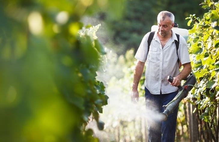 Elképesztő, mennyi hamis növényvédő szer kerül Magyarországra