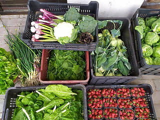 Jövőre kedvezőbben adóznak a mezőgazdasági kisvállalkozások