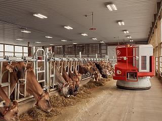 Van egy farm az USA-ban, ahol nemsokára még a csalánt is robot fogja kitépni