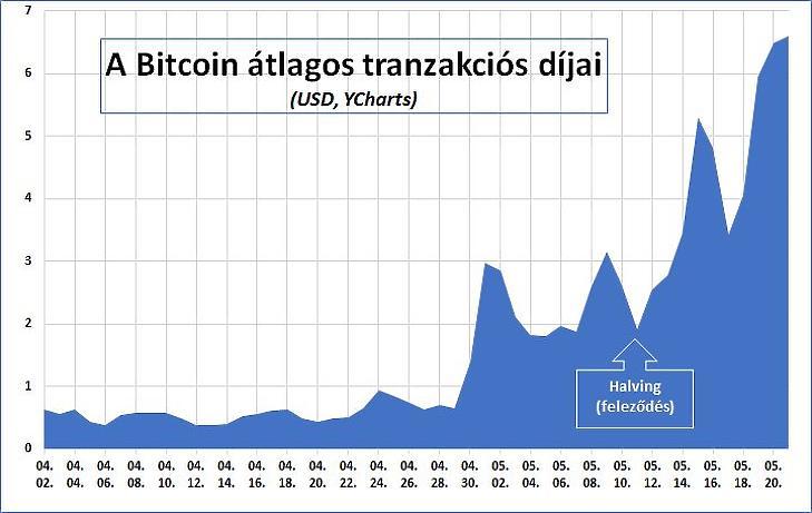 A Bitcoin tranzakciós díjai és a halving