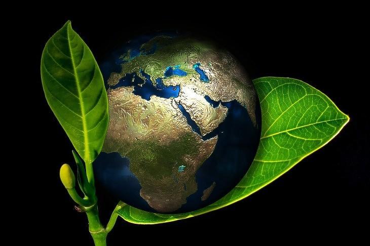 Zöld bolygó (Pixabay.com)