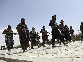 A tálibok már a családját fenyegetik azoknak a tolmácsoknak, akik a hollandoknak segítettek