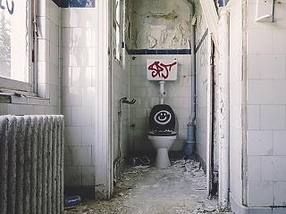 Tényleg fertőzéseket okoznak a nyilvános mosdók?